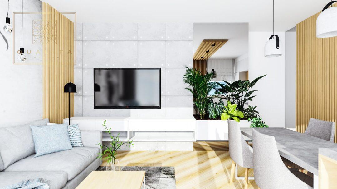 Qualita_Projektowanie salonów z aneksem kuchennym - architekt pomorskie